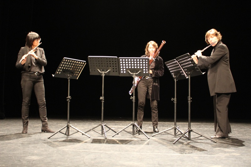 ENSEMBLE MUSICAL CLUNY3.jpg
