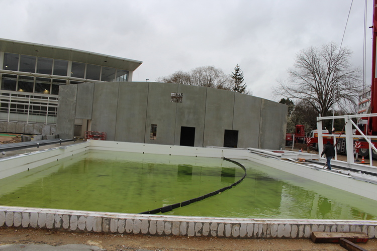 chantier piscine Mâcon (4x2).JPG