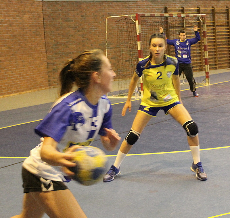 handball Mâcon (101).JPG