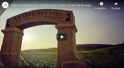 CITE VINS BOURGOGNE VIDEO - 1.jpg