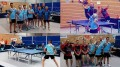collage tennis table.jpg